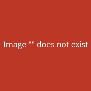 Dutch Oven quick & easy